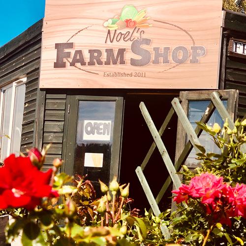 Weekend Click & Collect, Noel's Farm Shop, Sutton Green Garden Centre, Guildford